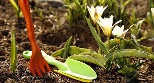 Обработка почвы на приусадебном участке